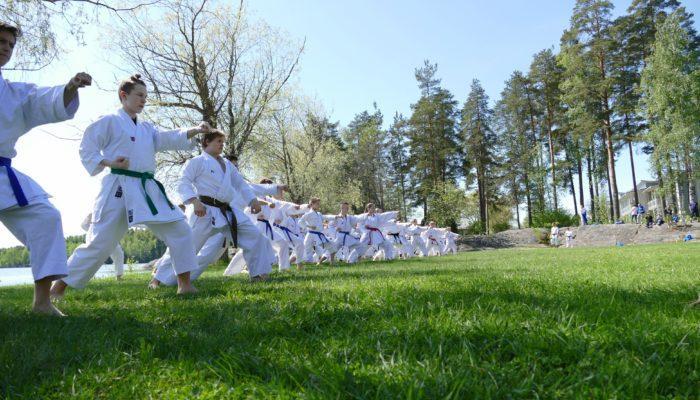 karateliitto-kesäleiri-2018